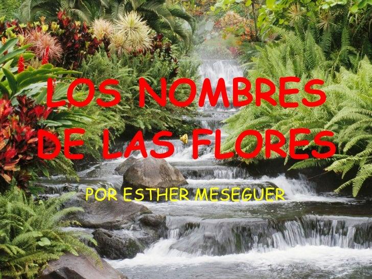 LOS NOMBRES DE LAS FLORES POR ESTHER MESEGUER