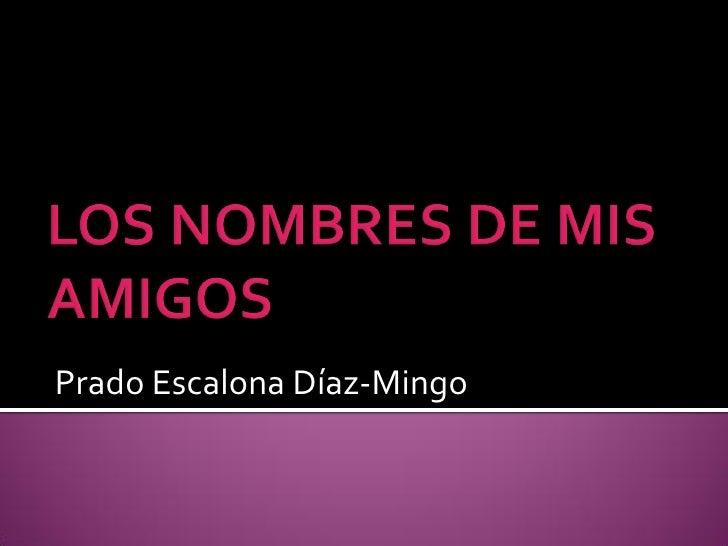 Prado Escalona Díaz-Mingo