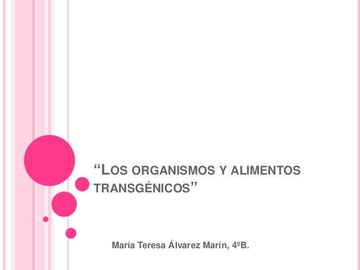 """""""Los organismos y alimentos transgénicos""""<br />María Teresa Álvarez Marín, 4ºB.<br />"""
