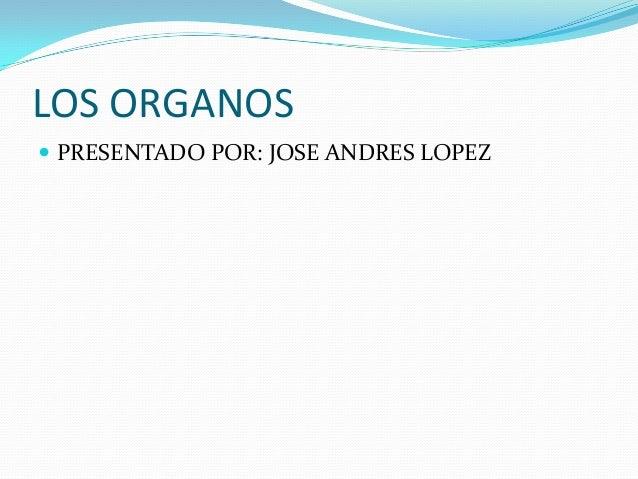 LOS ORGANOS  PRESENTADO POR: JOSE ANDRES LOPEZ