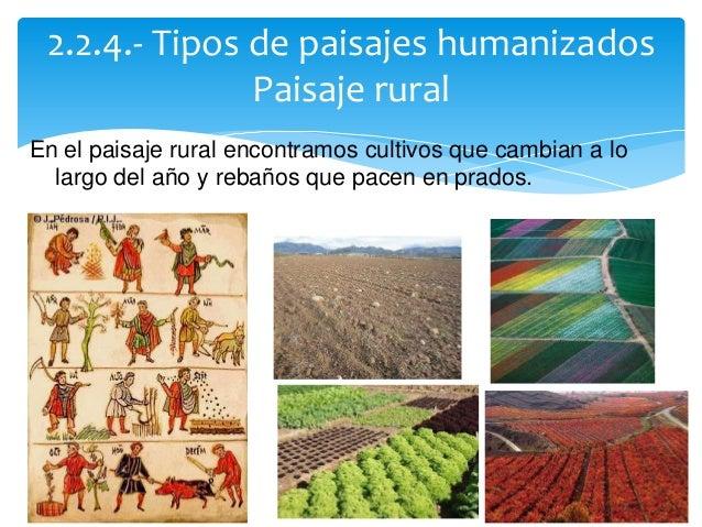 Los paisajes v5 - Tipos de paisajes ...