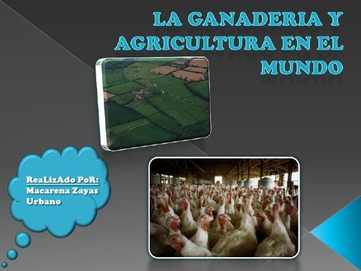 LA GANADERIA Y AGRICULTURA EN EL MUNDO<br />ReaLizAdoPoR:<br />Macarena Zayas Urbano<br />