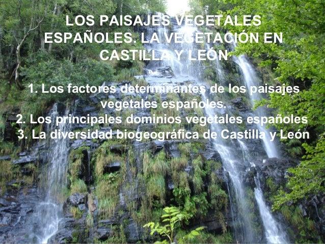 LOS PAISAJES VEGETALESESPAÑOLES. LA VEGETACIÓN ENCASTILLA Y LEÓN1. Los factores determinantes de los paisajesvegetales esp...