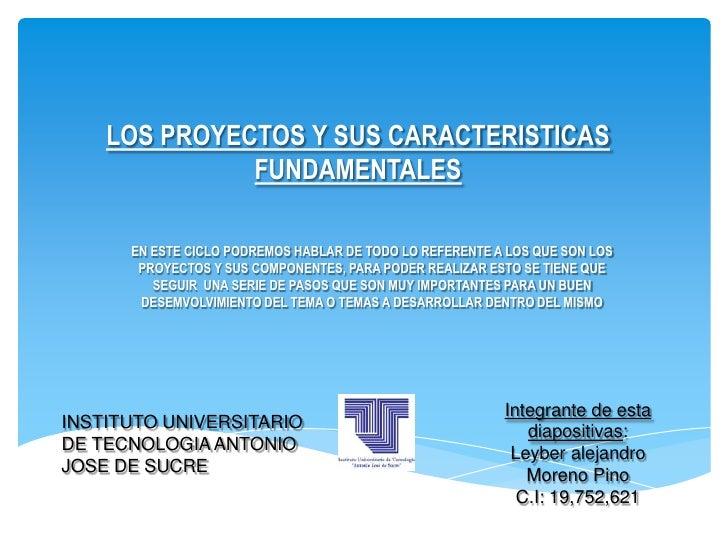 LOS PROYECTOS Y SUS CARACTERISTICAS              FUNDAMENTALES      EN ESTE CICLO PODREMOS HABLAR DE TODO LO REFERENTE A L...