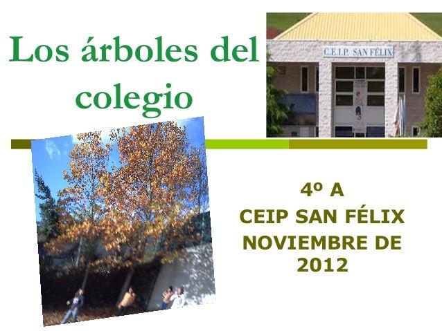 Los árboles del   colegio                  4º A             CEIP SAN FÉLIX             NOVIEMBRE DE                  2012
