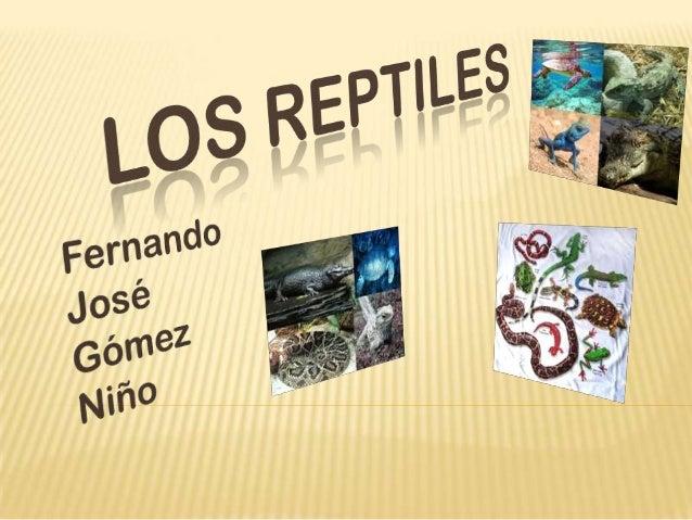 LOS REPTILES  Definición. Características .  Clases de reptiles . Cuestionario.
