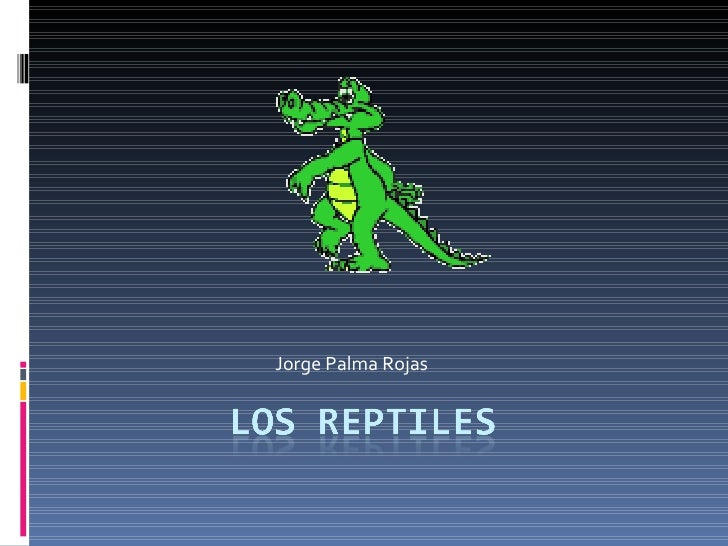 Jorge Palma Rojas