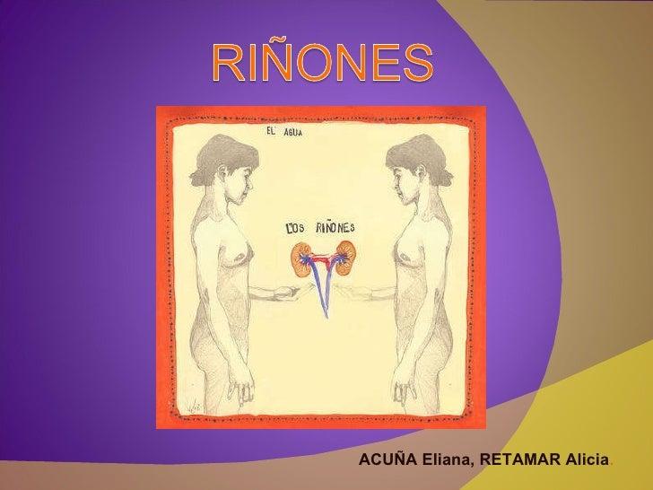 ACUÑA Eliana, RETAMAR Alicia .