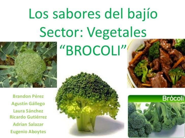 """Los sabores del bajíoSector: Vegetales""""BROCOLI""""<br />Brandon Pérez <br />Agustín Gállego<br />Laura Sánchez Ricardo Gutiér..."""
