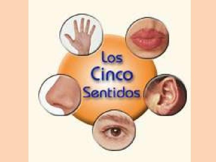 Los sentidos for Mural de los 5 sentidos
