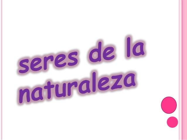 Los seres de la naturaleza pueden ser animales, vegetales o minerales.