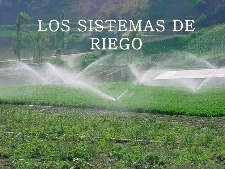 LOS SISTEMAS DE     RIEGO