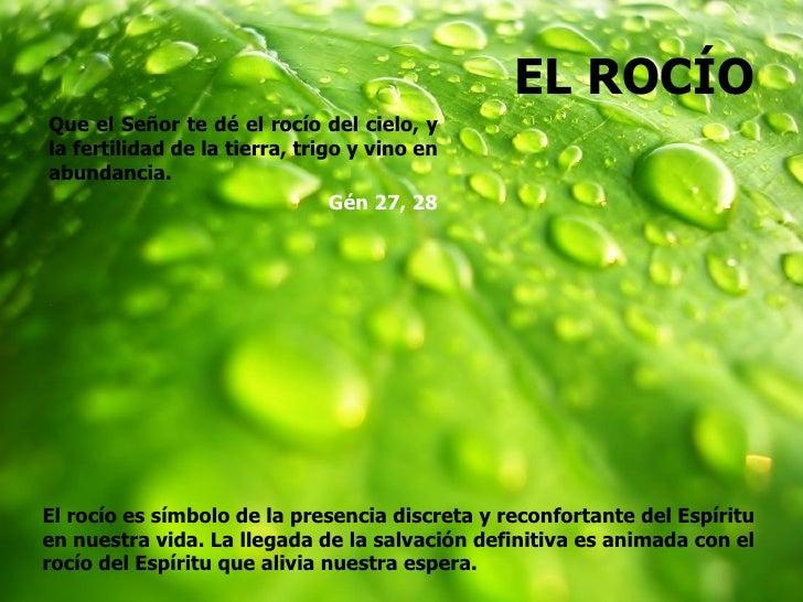 EL ROCÍOQue el Señor te dé el rocío del cielo, yla fertilidad de la tierra, trigo y vino enabundancia.                    ...
