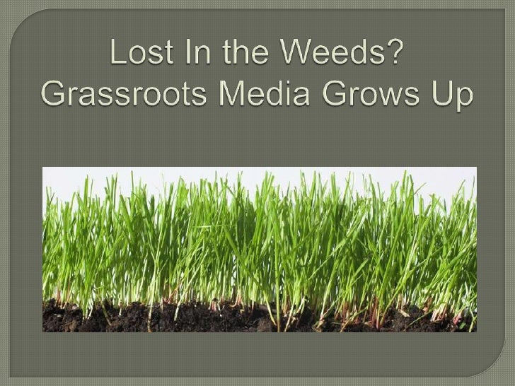 Lost in the Weeds: Grassroots Media Grows Up