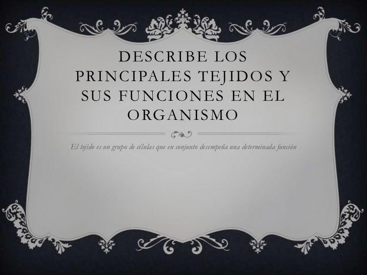 DESCRIBE LOS PRINCIPALES TEJIDOS Y  SUS FUNCIONES EN EL       ORGANISMOEl tejido es un grupo de células que en conjunto de...