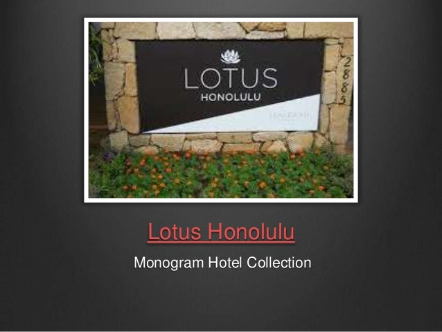 Lotus Honolulu: A Place to feel at HOME in Hawaii!