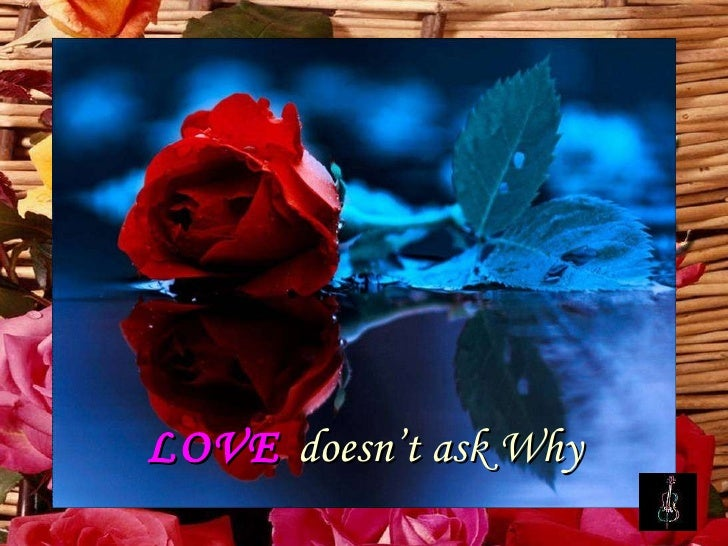 LOVE   doesn't ask Why