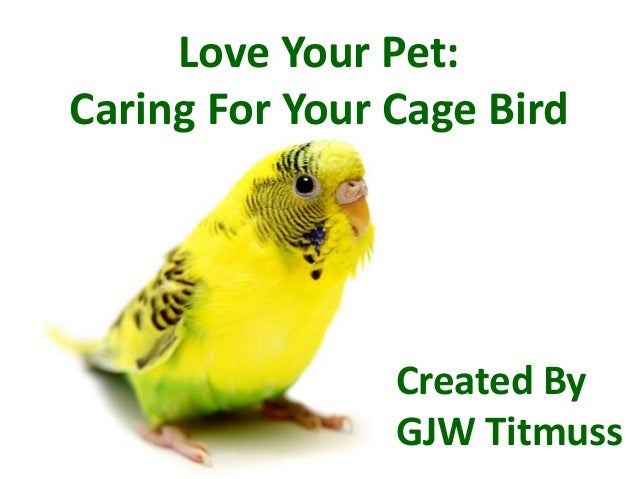 Love Your Pet: Caring For Your Cage Bird  Created By GJW Titmuss