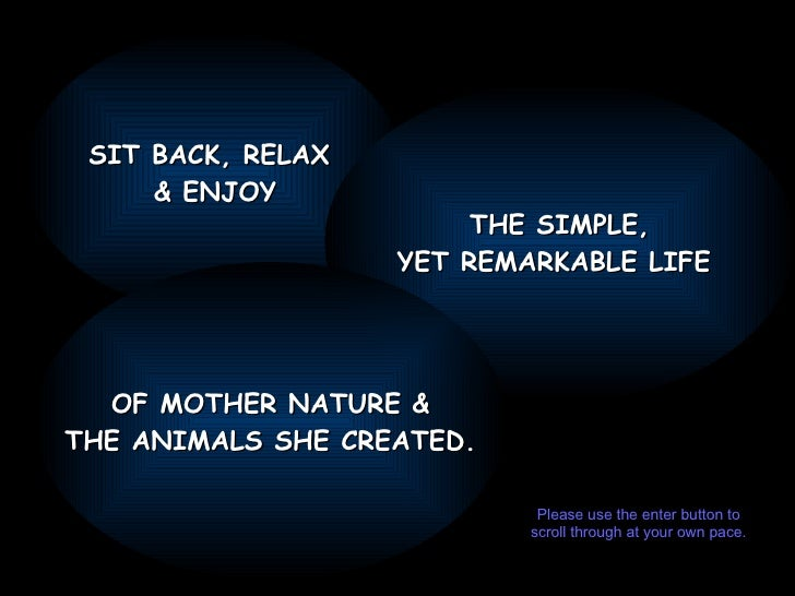 SIT BACK, RELAX  & ENJOY THE SIMPLE, YET REMARKABLE LIFE  OF MOTHER NATURE & THE ANIMALS SHE CREATED. Please use the enter...