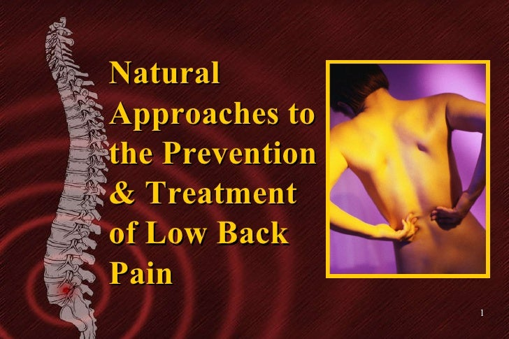 Natural Approaches to the Prevention & Treatment of Low Back Pain