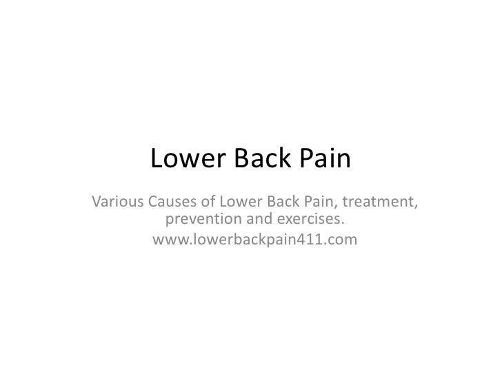 Lower Back Pain<br />Various Causes of Lower Back Pain, treatment, prevention and exercises.<br />www.lowerbackpain411.com...