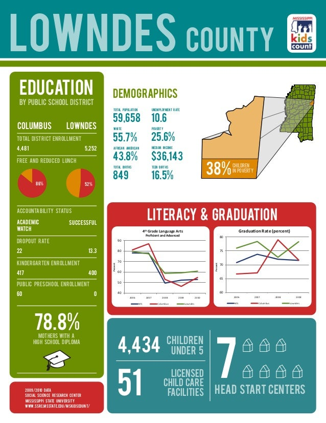 lowndes county education                                     demographics BY public school DISTRICT                       ...