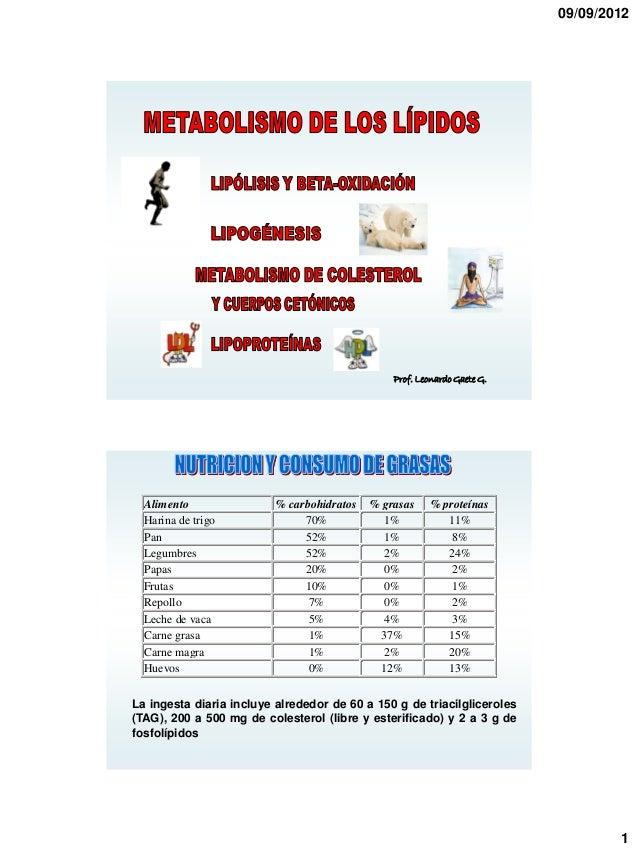 09/09/2012                                                Prof. Leonardo Gaete G.  Alimento                % carbohidratos...