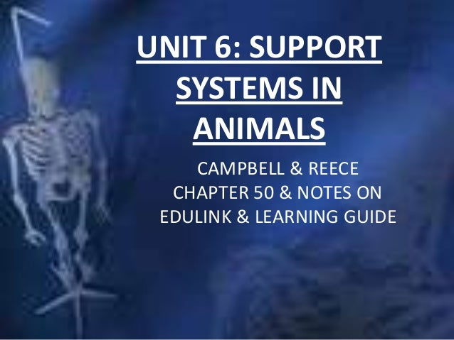UNIT 6: SUPPORTSYSTEMS INANIMALSCAMPBELL & REECECHAPTER 50 & NOTES ONEDULINK & LEARNING GUIDE