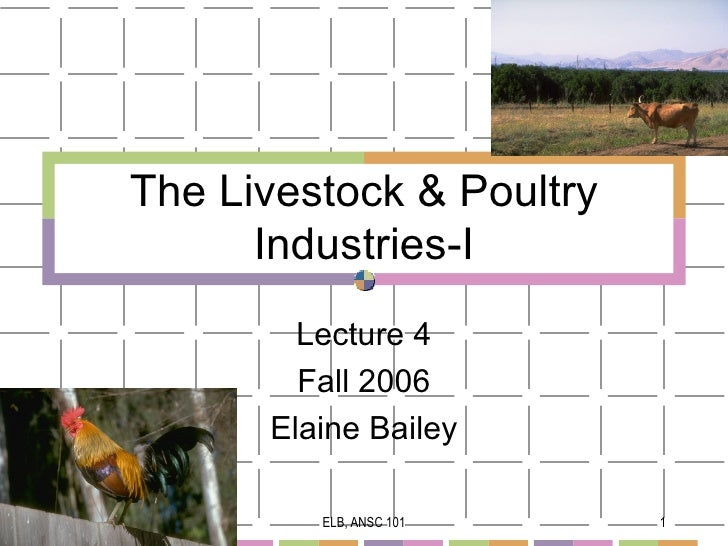 The Livestock & Poultry      Industries-I        Lecture 4        Fall 2006      Elaine Bailey         ELB, ANSC 101    1