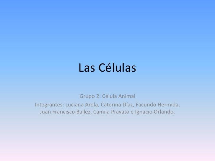 Las Células<br />Grupo 2: Célula Animal<br />Integrantes: Luciana Arola, Caterina Díaz, Facundo Hermida, Juan Francisco Ba...