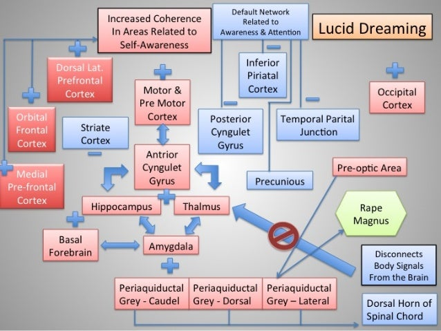 Dreaming - Lucid Dreaming
