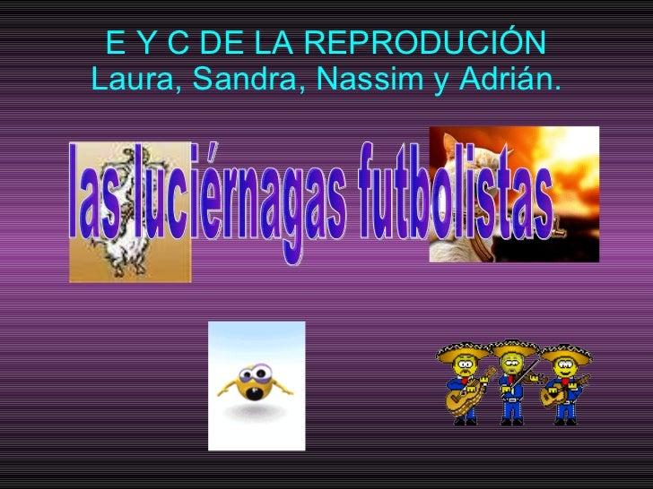 E Y C DE LA REPRODUCIÓN Laura, Sandra, Nassim y Adrián. las luciérnagas futbolistas