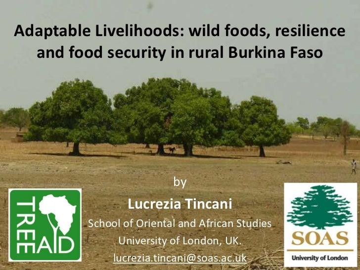 Lucrezia Tincani - Adaptable Livelihoods: wild foods, resilience and food security in rural Burkina Faso