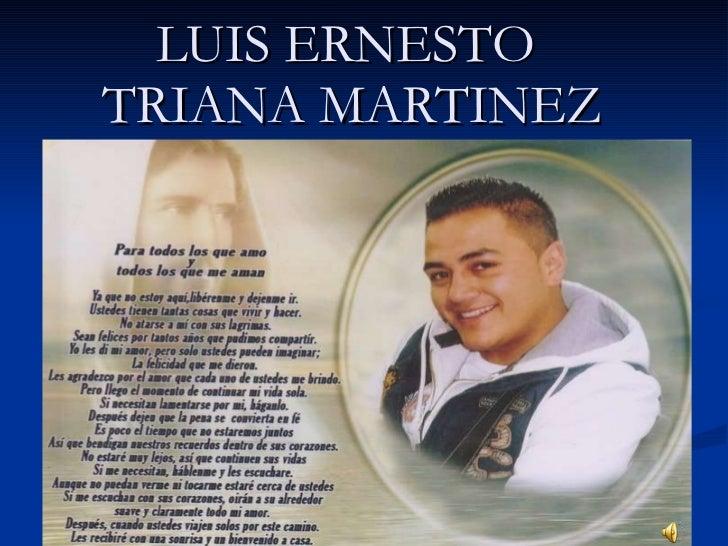 LUIS ERNESTO  TRIANA MARTINEZ