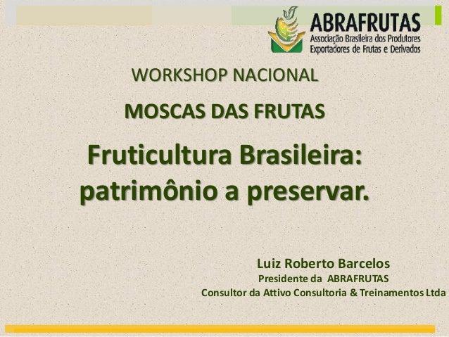 MOSCAS DAS FRUTAS Fruticultura Brasileira: patrimônio a preservar. WORKSHOP NACIONAL Luiz Roberto Barcelos Presidente da A...