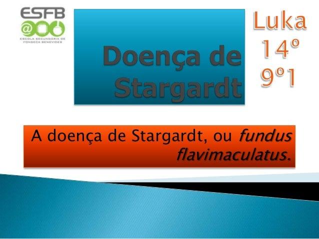 A doença de Stargardt, ou fundus                 flavimaculatus.