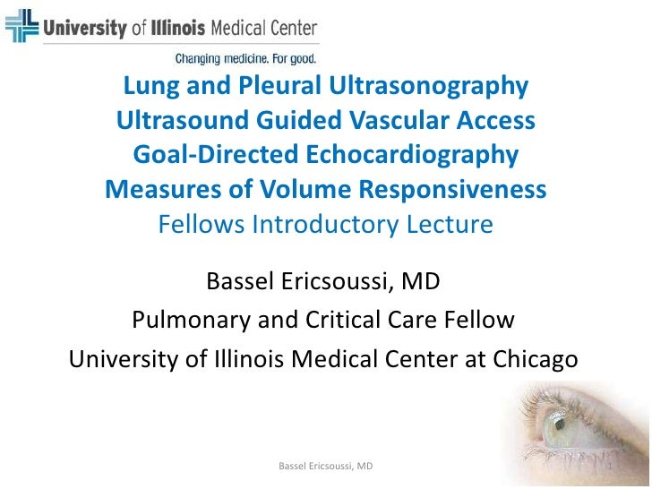 Lung and Pleural Ultrasonography - Ultrasound Guided Vascular Access - Goal Directed Echocardiography - Measures of Volume Responsiveness