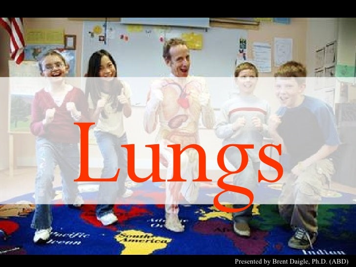 Lungs Presented by Brent Daigle, Ph.D. (ABD)