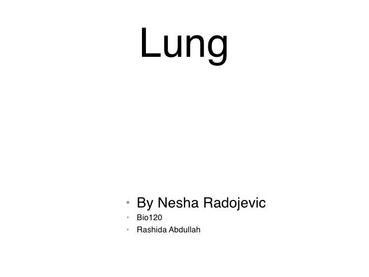 Lung   • By Nesha Radojevic • Bio120 • Rashida Abdullah