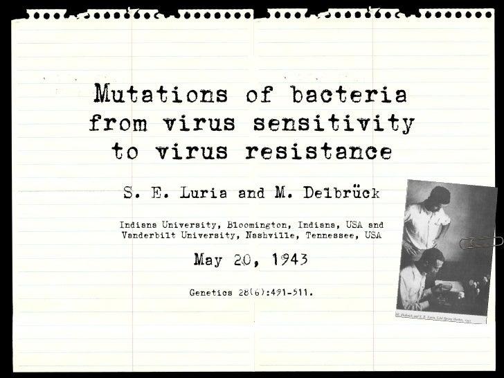 Mutations of bacteria from virus sensitivity   to virus resistance   S. E. Luria and M. Delbrück   Indiana University, Blo...