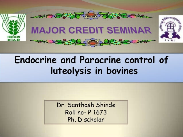 Endocrine and Paracrine control of luteolysis in bovines  Dr. Santhosh Shinde Roll no- P 1673 Ph. D scholar