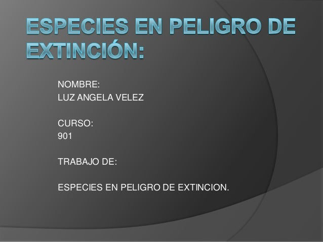 NOMBRE:LUZ ANGELA VELEZCURSO:901TRABAJO DE:ESPECIES EN PELIGRO DE EXTINCION.