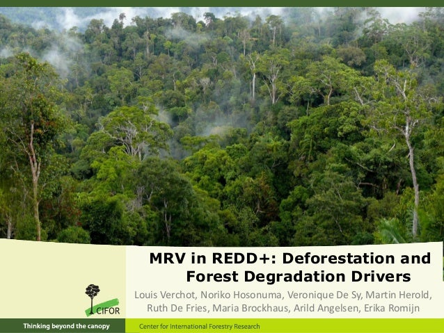 MRV in REDD+: Deforestation and forest degradation drivers