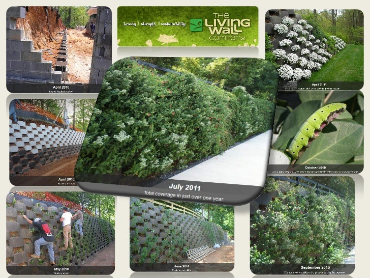 The Living Wall Company, LLC | Saint Louis, MO. | 314-394-8715 | info@thelivingwallco.com