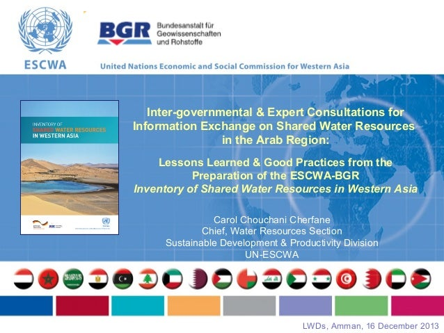 Inter-governmental & Expert Consultations for Information Exchange on Shared Water Resources in the Arab Region: Lessons L...