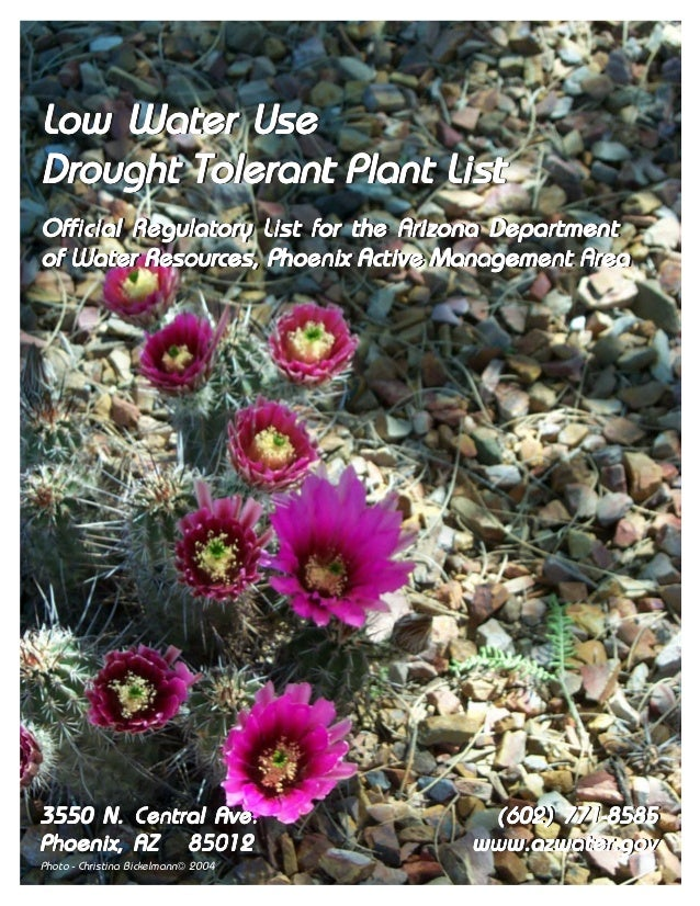 Low Water UseDrought Tolerant Plant ListOfficial Regulatory List for the Arizona DepartmentOfficial Regulatory List for th...