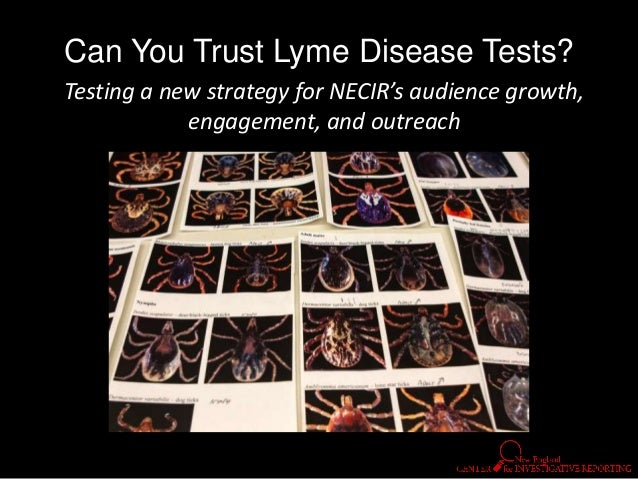 Can You Trust Lyme Disease Tests? Testing a new strategy for NECIR's audience growth, engagement, and outreach