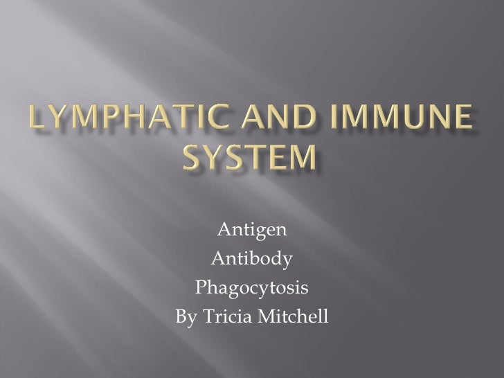 Lymphatic And Immune System