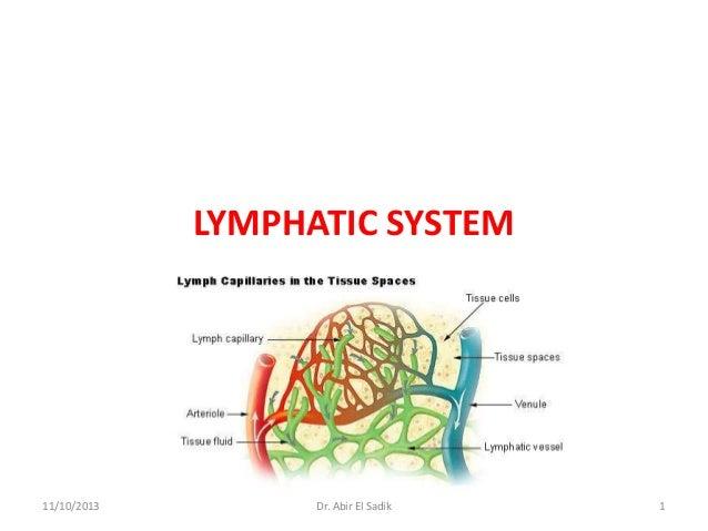 LYMPHATIC SYSTEM  11/10/2013  Dr. Abir El Sadik  1