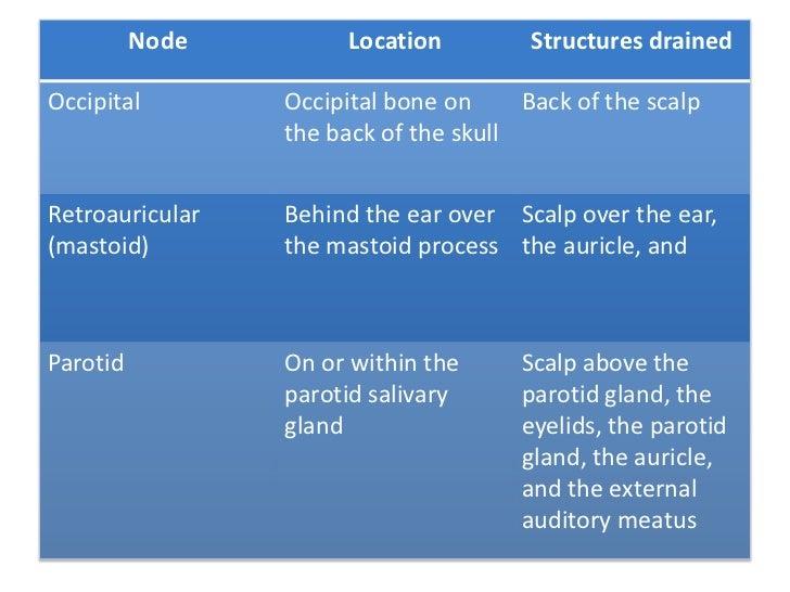 lymphatics of head and neck pdf free